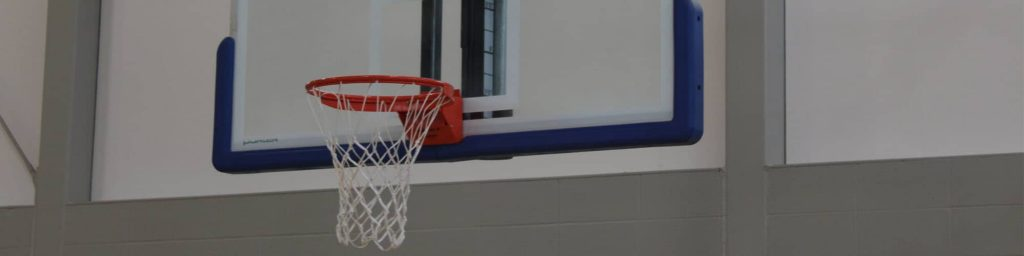 Top 10 Indoor Basketball Hoops